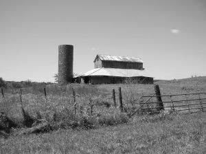 Once a modern barn, now gone. Torn down as an old relic, times have changed.