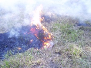 If fields are burned for management reasons you need to know - right?