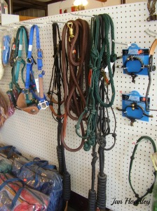 Small feed stores or farmer's Co-op often has a small selection of basic horse equipment