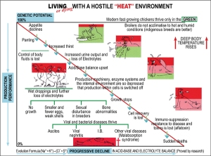 Visual 2 (Living or Dying with a Hostile Heat Environment)600x72px